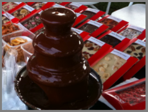 Chocolate Fountain and Customized Chocolate Bars